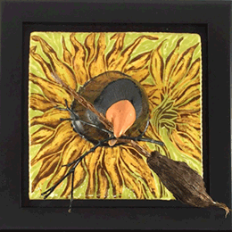 root-sunflower